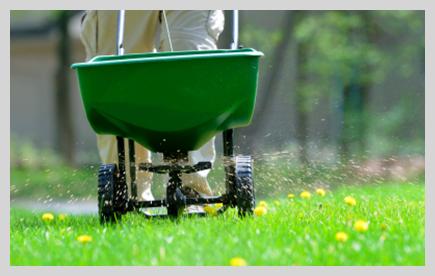 Yard being fertilized